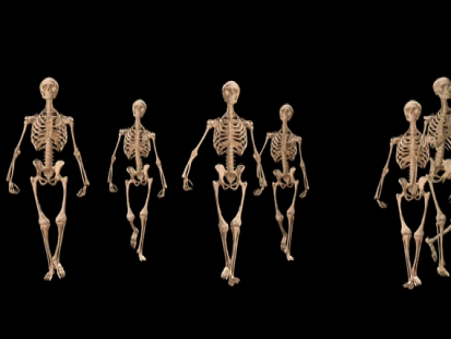 Jon Hyers Visual Effects 1: Skeleton Forward